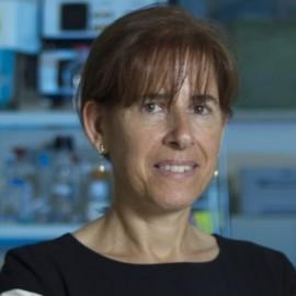 Dr Valerie Said Conti