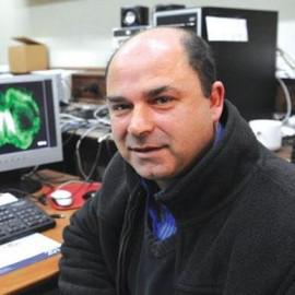 Prof Mario Valentino